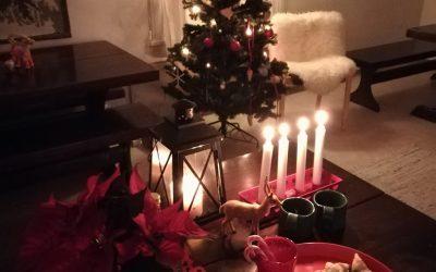 Vietä tunnelmallista joulujuhlaa Hanikassa